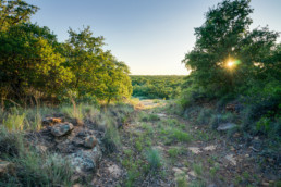 Land, Farm, Ranch photo of real estate listing in North Texas