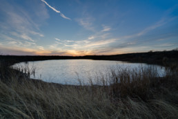 A farm & ranch image of a pond at a real estate listing on the outskirts of Wichita Falls, TX